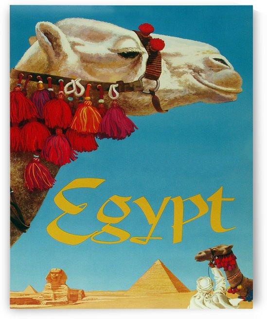 Camel on Egypt by vintagesupreme