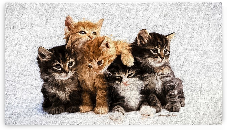Cats for Breakfast by A WYN CHANCE
