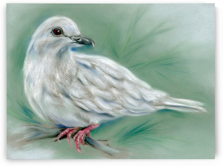 White Dove in the Pine by MM Anderson