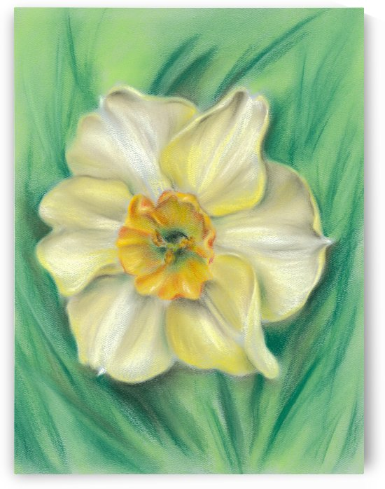 Daffodil Spring Floral by MM Anderson