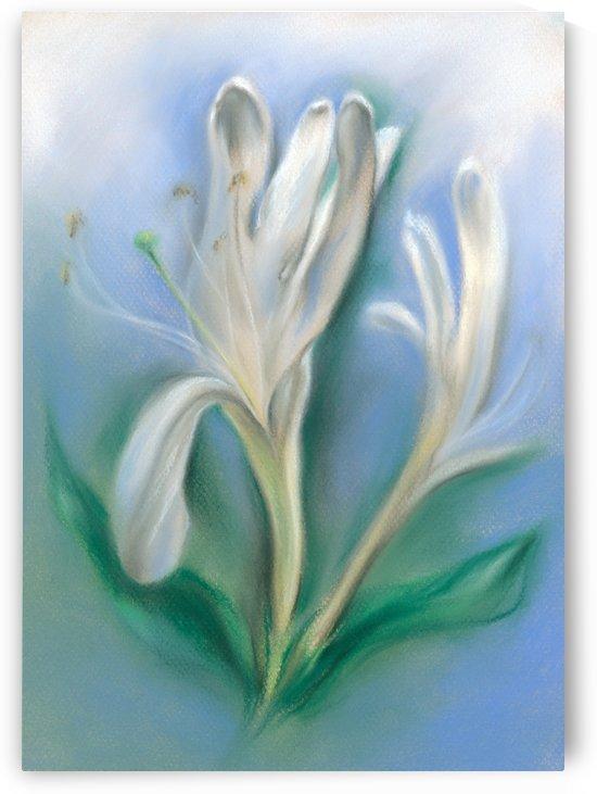 Japanese Honeysuckle Flowers by MM Anderson