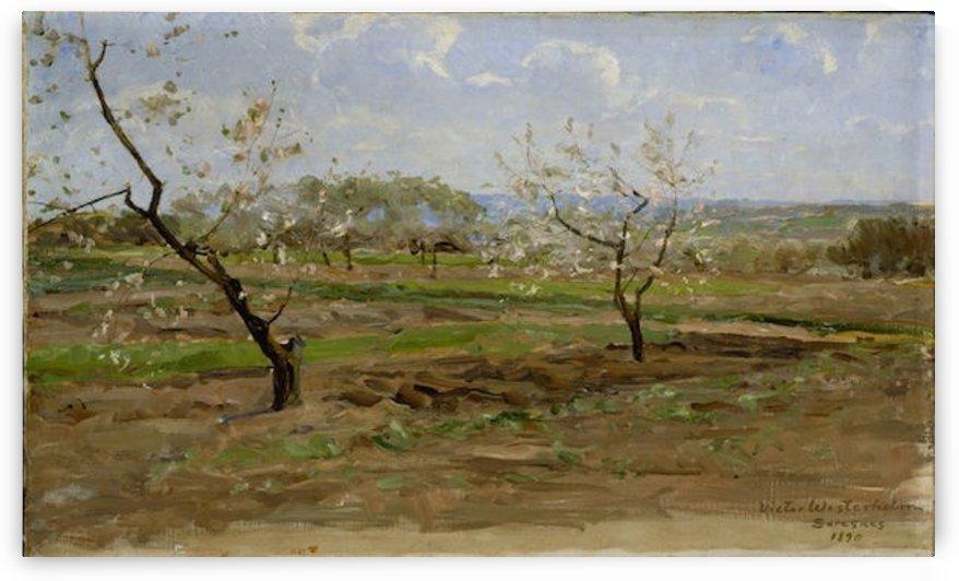 kukkiviahedelmapuita by Westerholm by Westerholm