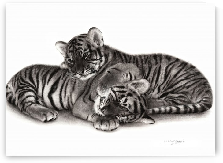 Tiger Cubs by Danguole Serstinskaja