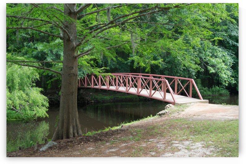 Jeffries Creek Footbridge by MM Anderson