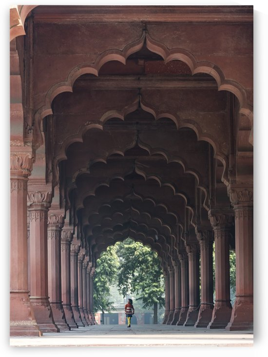 Red Fort Old Delhi India by Petr Svarc