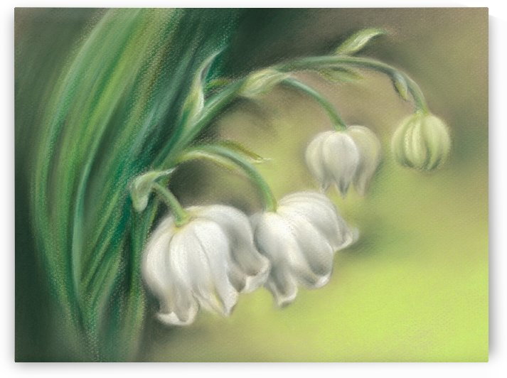 Lily of the Valley Flowers by MM Anderson