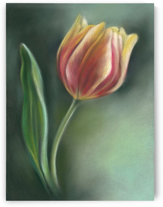 Red and Yellow Tulip with Leaf by MM Anderson