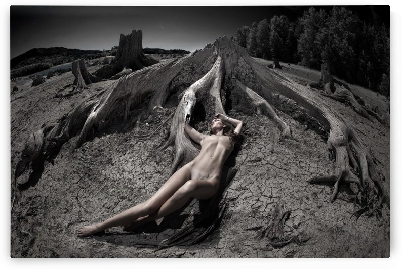 Embrace by DARIO INFINI