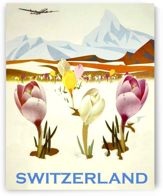Spring in Switzerland by vintagesupreme