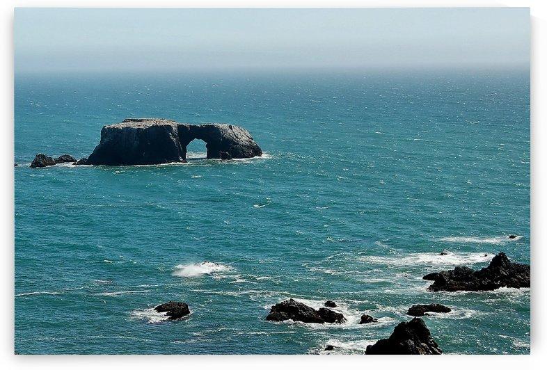 Pacific Coast Highway Clifornia CA 14 by Morteza Golpoor