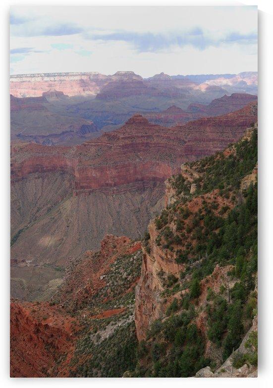 Grand Canyon 33 by Morteza Golpoor