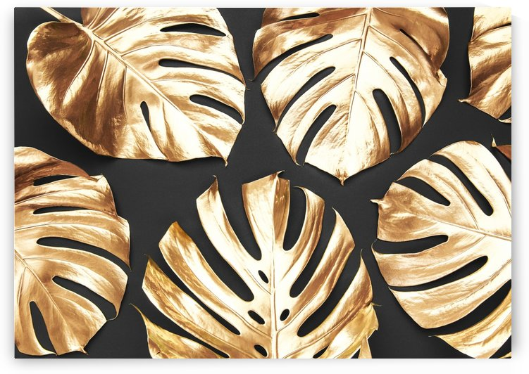 TROPICAL GOLD   240X170   02 06 2020    02A5 by Uillian Rius