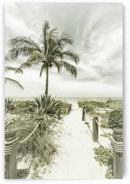 Path to the beach | Vintage by Melanie Viola
