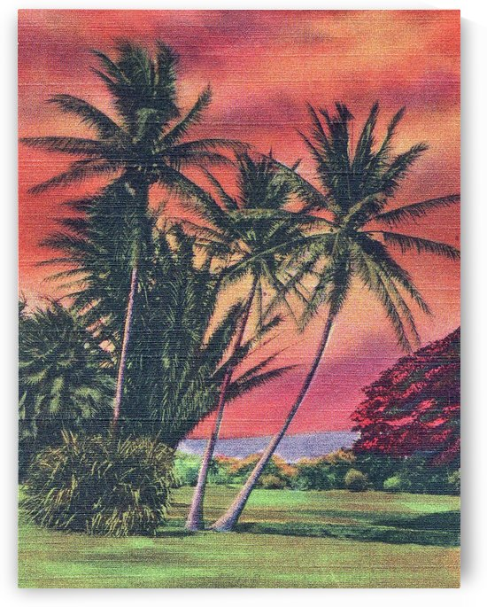 Hawaii Palm Trees by vintagesupreme