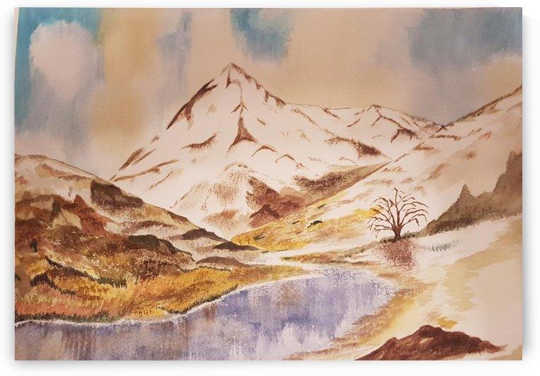 Ladakh Stream by Shankar Kashyap