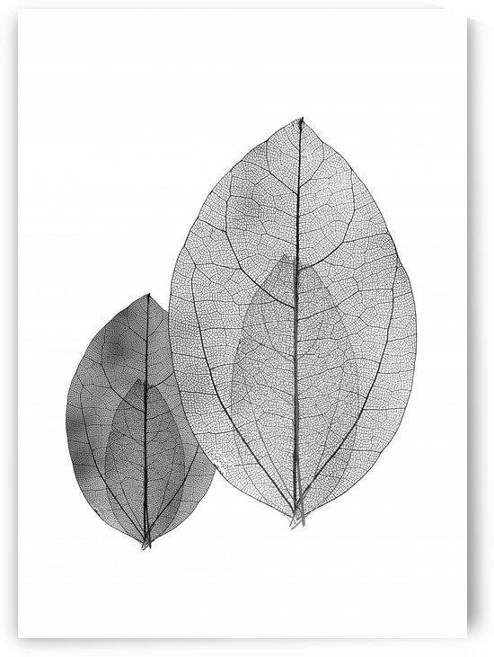 FOLHAS MINIMALISTAS   130X182   09 06 2020    03A6 by Uillian Rius