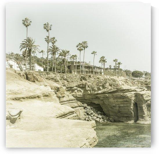 SAN DIEGO Sunset Cliffs | Vintage by Melanie Viola