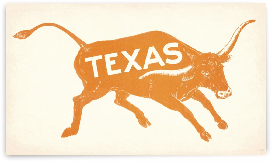 Row One Brand Vintage Texas Longhorn Wall Art by Row One Brand