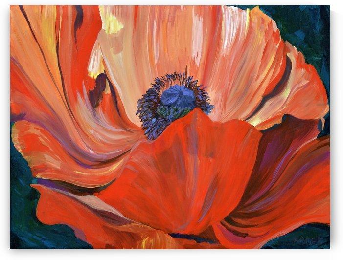 Red Poppy by JR Rapier
