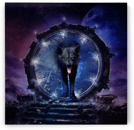 Wonderful wolf by nicky2342