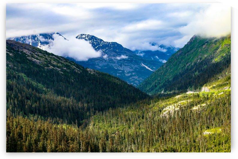 Mountain Valley by Michael Stephen Dikovitsky
