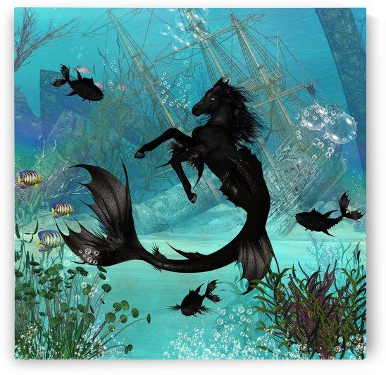 Wonderful seahorse by nicky2342