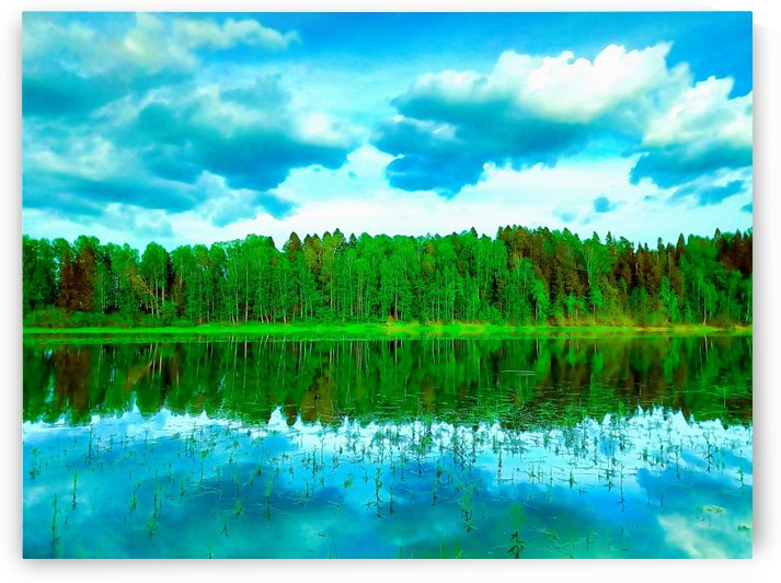 Forest beyond the lake by unnarto