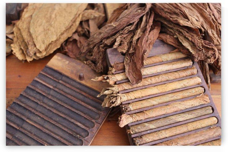 Cuba Cigars 5625 by Move-Art