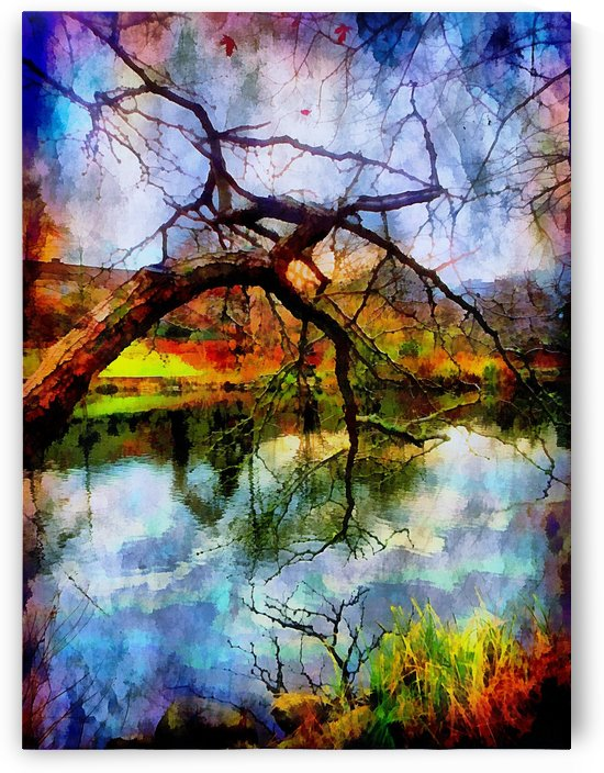 Tree Branch In Late Autumn by Dorothy Berry-Lound