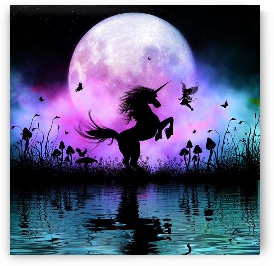 Wonderful unicorn with fairy by nicky2342