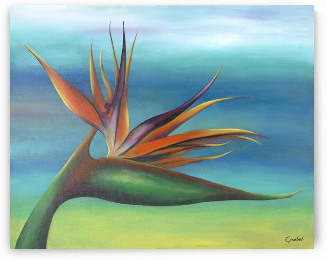 Bird of paradise by Bill Gimbel