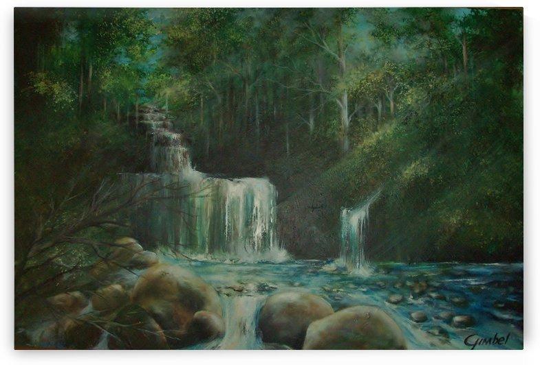 falls by Bill Gimbel