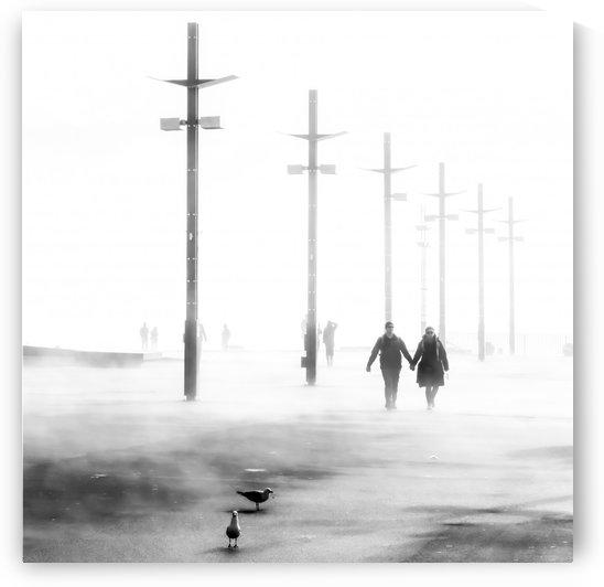 Waterfront in Fog by Sebastian Schuster