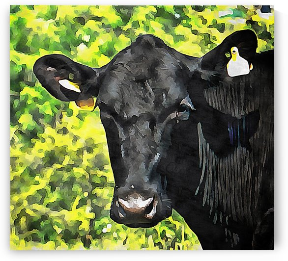 Cow With Yellow Earrings by Dorothy Berry-Lound