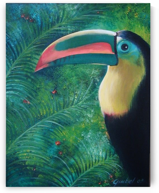 toucan by Bill Gimbel
