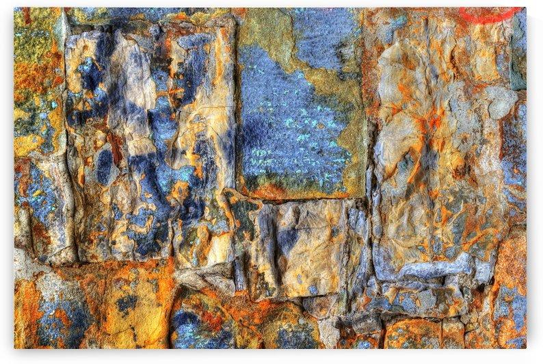 Tordues by Christian Bibeau