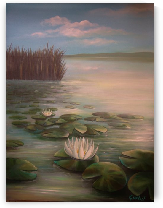 water lillies by Bill Gimbel