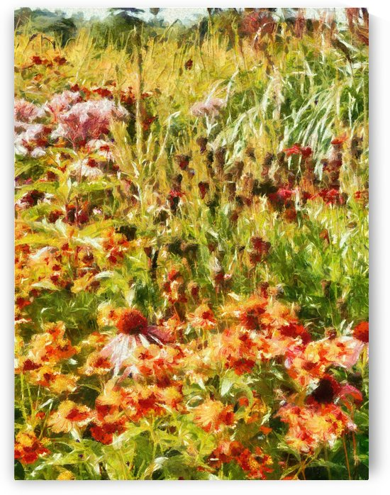 Colourful Cottage Garden by Dorothy Berry-Lound