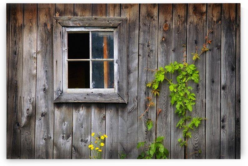 Fenetre de grange by Christian Bibeau