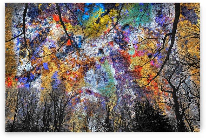 Nouvel automne by Christian Bibeau