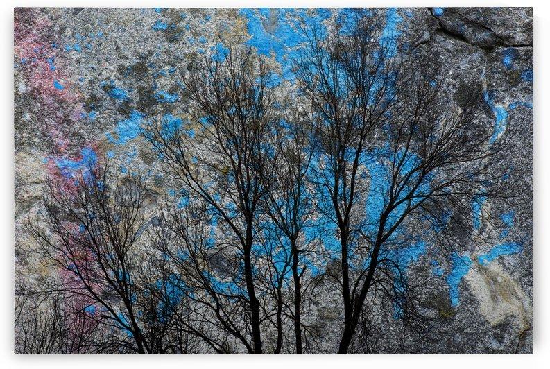 Texture by Christian Bibeau