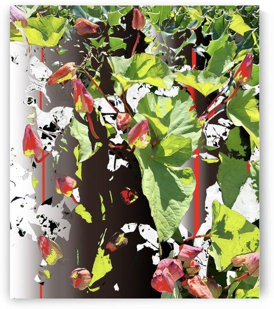 Hedgerow 200712 by BotanicalArt ca