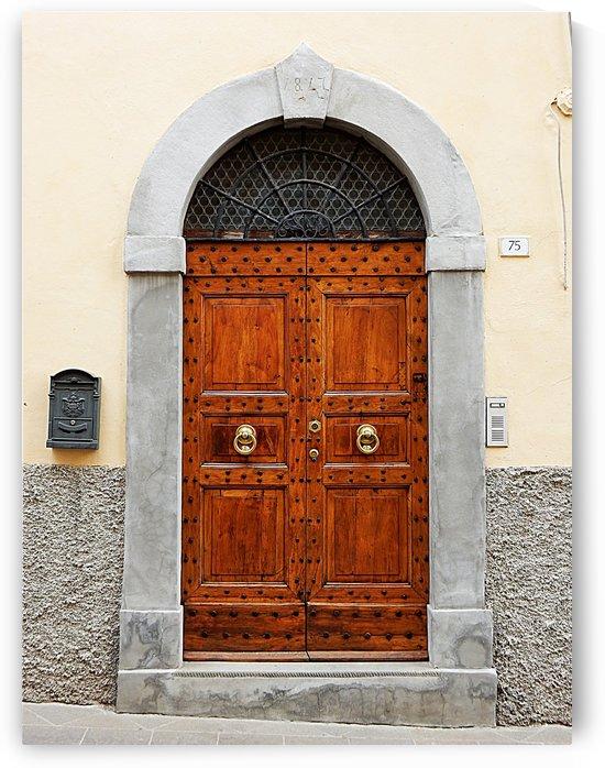 Old Wooden Door Castiglione del Lago by Dorothy Berry-Lound