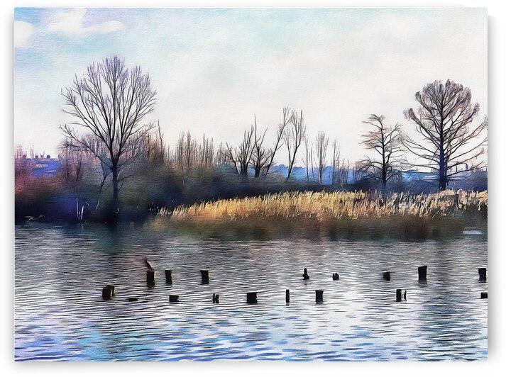 Lago di Chiusi Tuscany by Dorothy Berry-Lound