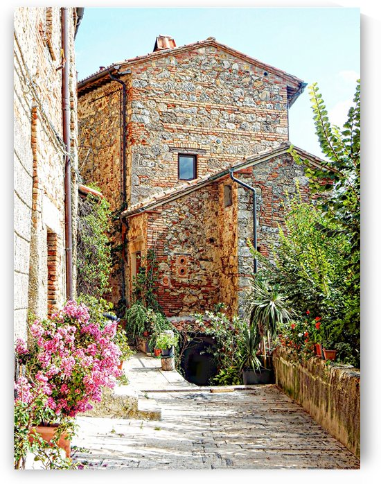 Old House Cetona by Dorothy Berry-Lound