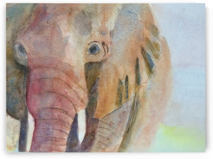 East African Elephant by Adrian Butt