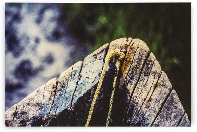 Boat - LXXXIII by Carlos Wood