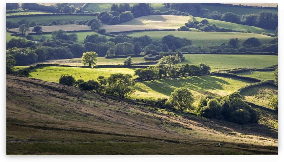 Fields and farmland of South Wales by Leighton Collins