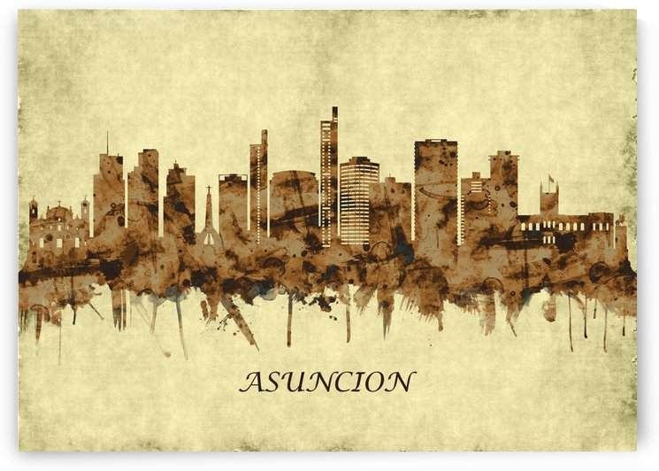 Asuncion Paraguay Cityscape by Towseef