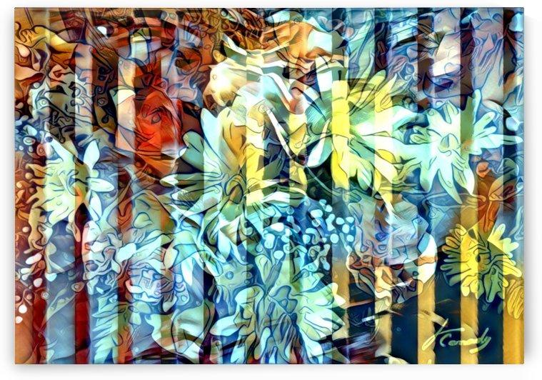 333DD249 B24B 4F74 8E9B 50CD630AAC08 by JLBCArtGALLERY
